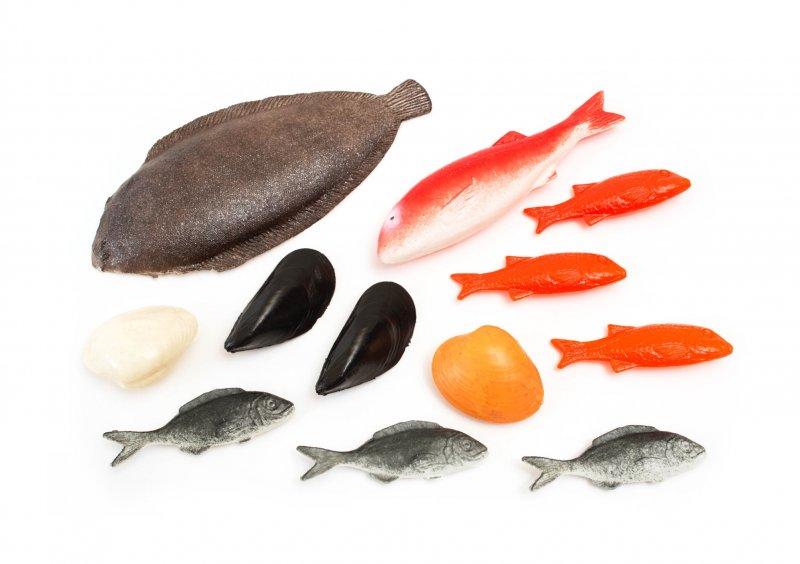 Jedlá – ryby